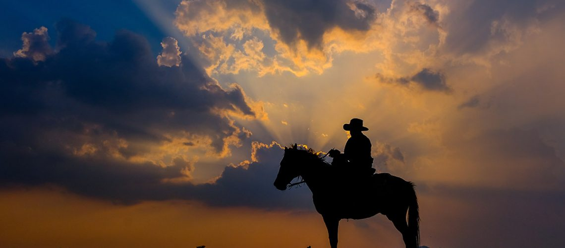 Cowboy on horseback at sunset